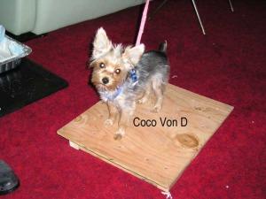 Coco-Von-D